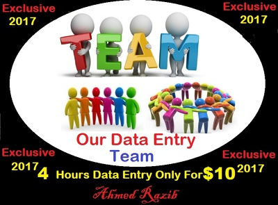 Do Data Entry With My Team