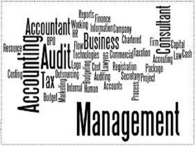 Bookkeeping (including Income, Expenses), Bank Recs & Financial Statements