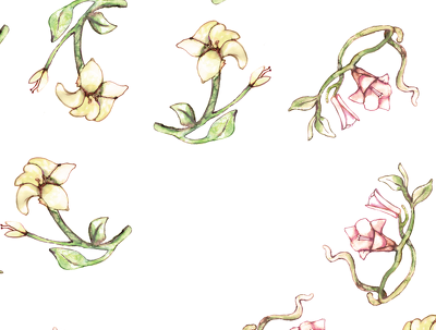 Create a flor.fem. vintage.artsy.abstract, .etc. pattern + high resolution