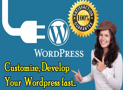Customize your WordPress theme as your requare