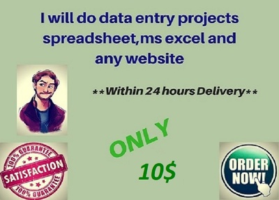 Do 1 hour Data Entry projects spreadsheet,Ms Excel and any Website