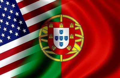 Professionally translate english to portuguese and pt to eng