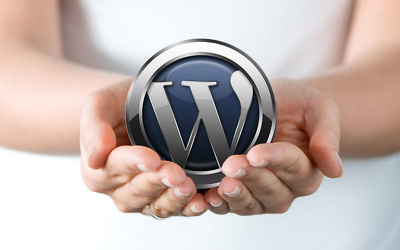 Provide 1 hour of Wordpress code Customization