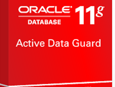 Configure Oracle 11g Active Data Guard with one physical standby server