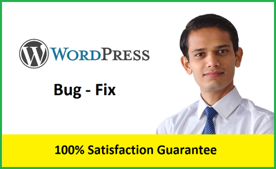 Fix any issues in wordpress website