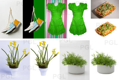 Doing hand-made Clipping Path on your 20 photos by using photoshop pen tool