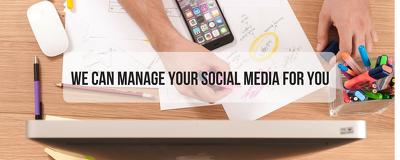 Completely manage ONE social media platform for one month