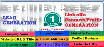 Provide You Lead Generation,Web Research,Data Collection Service within 3 Days