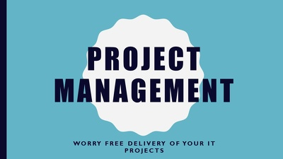 Provide project management for your IT projects
