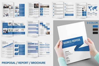 Design a professional brochure, booklet, catalogue, annual report