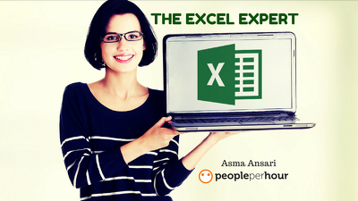 Assist you in All Type of EXCEL Work