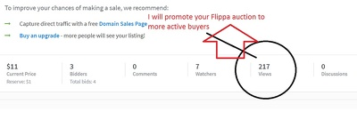 Promote your Flippa auction to 100 active buyers