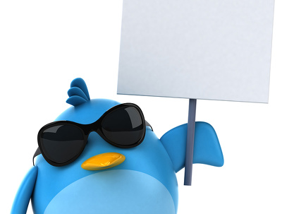 Tweet x5 posts per day, follow 500 people, send DM messages on your Twitter account.