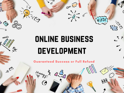 Create your online business development strategy and weekly step-by-step plan