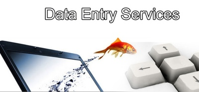 Do any kind of data entry job for two hours