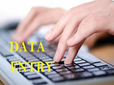 Do data entry work 500-700 entries