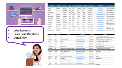 Provide 6 hrs of data entry and web research