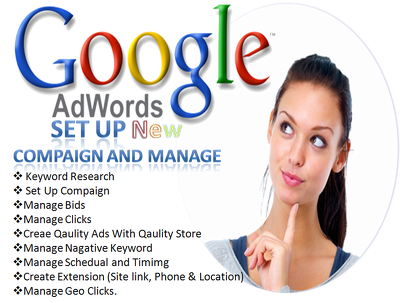 Set Up new Google Adwords PPC Campaign in English and manage 2 days