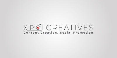 Professional Logo Design + 3 High Quality Concepts + Unlimited Revisions + Favicon