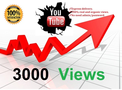 Provide 3,000+ Real and HR Youtube Views