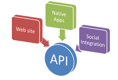 Social media API integration expert