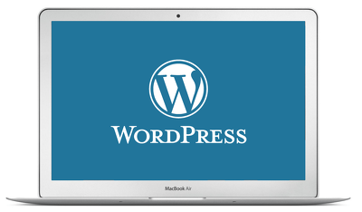 Setup and customise your Premium Wordpress theme within 48hrs