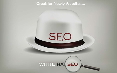 Do White Hat SEO Package with PBNs, Web.2.0, EDU, Article,Social Media, and more