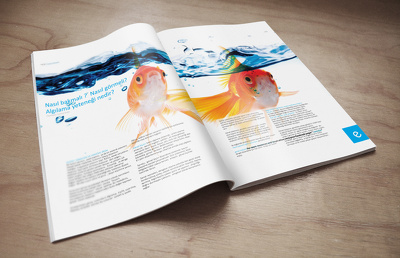 8 pages brochure, booklet, magazine & newspaper design