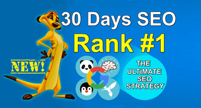 Daily Manual DA50+ High Authority Backlinks Building - Rank #1