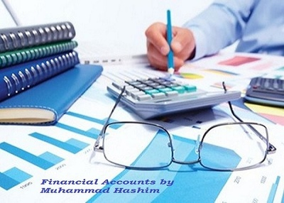 Prepare your projected/actual financial accounts for 1 year