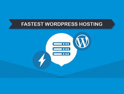 12 months of Optimised Wordpress Web Hosting