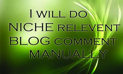 Do 33 Blog Comments Niche Relevant on Pages PR1 Plus
