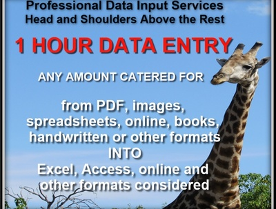 Do 1 hour data entry into Excel, Access, online, other software