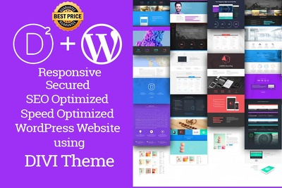 Develop pretty new WordPress responsive website using Divi theme