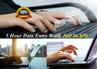 I will do 5 hours Data Entry work
