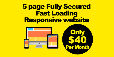 5 Page Fully Secured Fast Loading Responsive Website