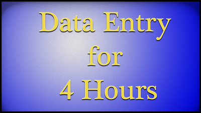 Provide Data Entry for 4 hours