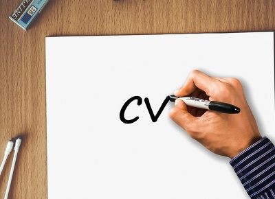 Professionally review  your CV