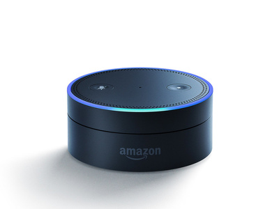 Develop an Amazon Echo skill for your business