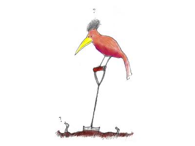 Make an original digital illustration for your blog or website
