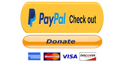 Create paypal donation  button for your wordpress website