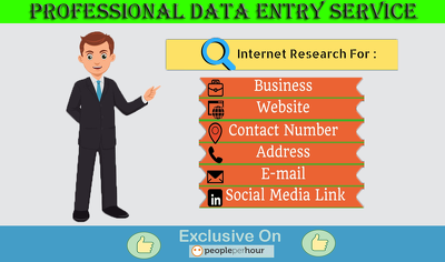 Do Any Kind of Accurate DATA ENTRY work for 1 Hour