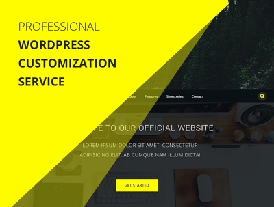 Install and Setup your WordPress theme Professionally