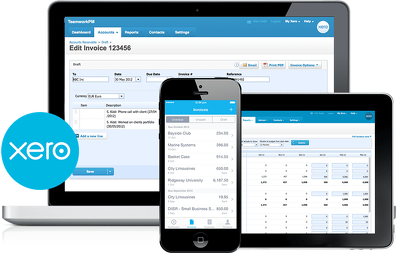 Bespoke Xero setup and provide some initial bookkeeping/tax advice