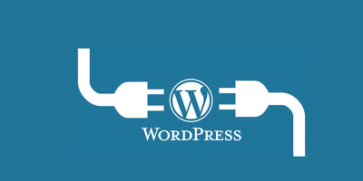 Build a custom WordPress plugin