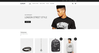Design & Develop you a Bespoke Magento Ecommerce Website