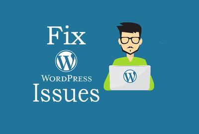 Fix any Wordpress Issue/ Problem