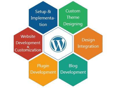 Do wordpress plugin customization