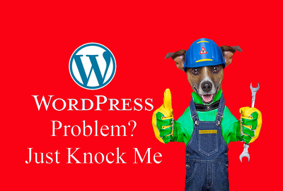 I will help with any kind of WordPress Problem / Issue / Error