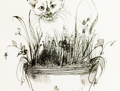 Illustrate your pet in pen/ink and deliver you the digital file